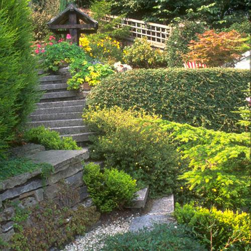 aiakujundus-haljastus-trepp-maastikuarhitektuur